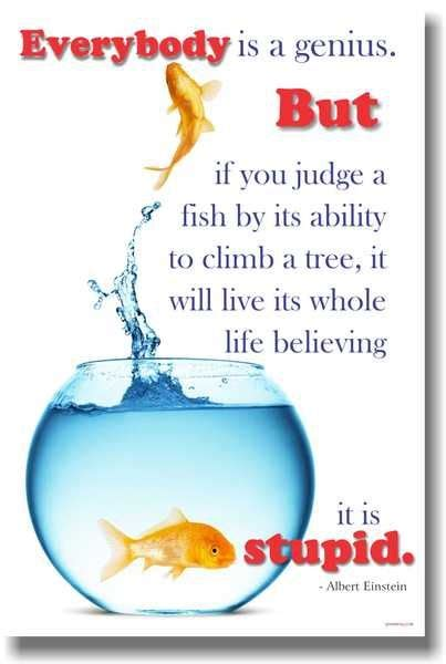 Everybody's a Genius but if you judge a fish by its