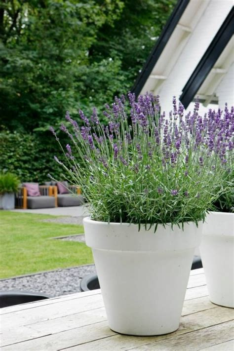 37 Modern Planters To Make Your Outdoors Stylish - DigsDigs