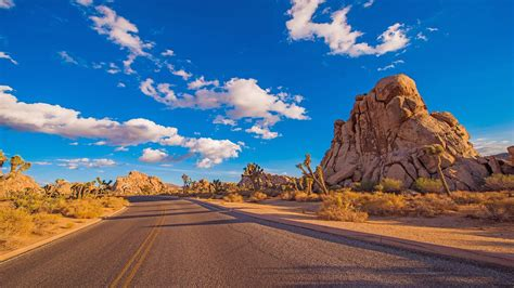Desert Road Joshua Tree National Park Is A Protected Area