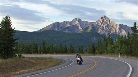 Motorcycle Riding, Elk, Rocky Mountains