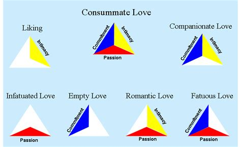 LOVEanon: The Theory of Love Pt