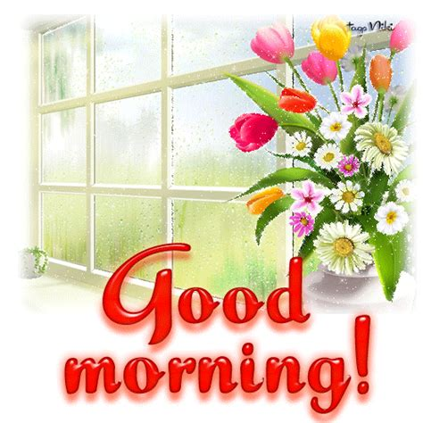 good morning gif pictures - Bing Images   Good morning picture