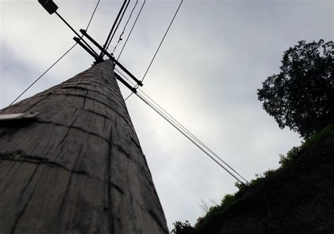 Nearly all of the 600,000 utility poles in Vermont have
