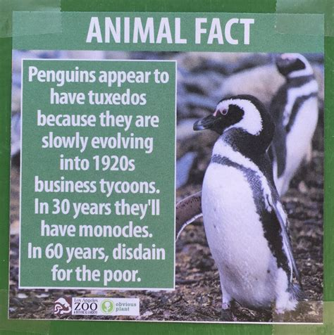 These Fake Animal Facts Were Posted at the Los Angeles Zoo